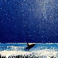 Starry, Starry Night, Lone Surfer, Cornwall.
